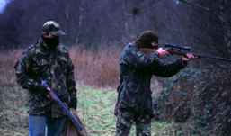 В Удмуртии в сентябре браконьеры убили трех лосей