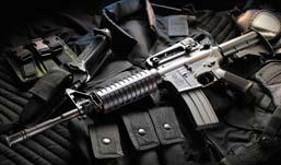 В России утвердили новый регламент выдачи разрешений на оружие