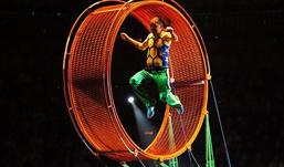 В московском цирке разбился известный колумбийский артист