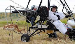 Из-за полета со стерхами у Путина возникли проблемы со здоровьем
