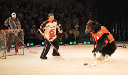Цирк на льду в Ижевске: веселые морские львы, эквилибристы и воздушные гимнасты на коньках