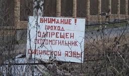 Почти 45 миллионов рублей потратят на укрепление скотомогильников в Удмуртии