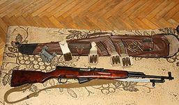 Житель Удмуртии устроил  стрельбу из охотничьего карабина