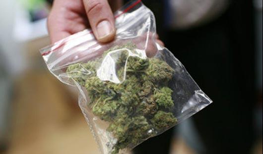 Особо крупная партия марихуаны обнаружена в Ижевске