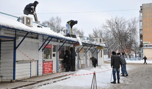 Фотофакт: ижевчане так любят животных, что не боятся падающего с крыши снега