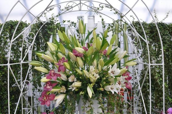 Фотофакт: в Ижевске открылась выставка «Цветы Удмуртии - 2013»