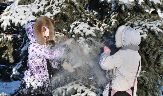 Тепло и малооблачно будет в Ижевске всю неделю